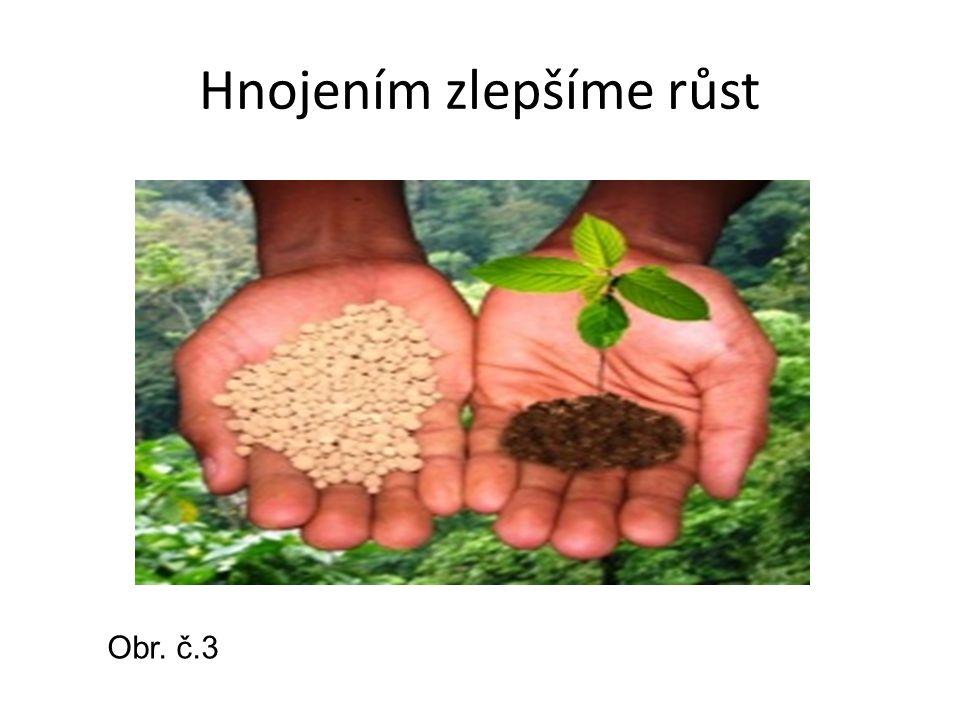 Hnojením zlepšíme růst