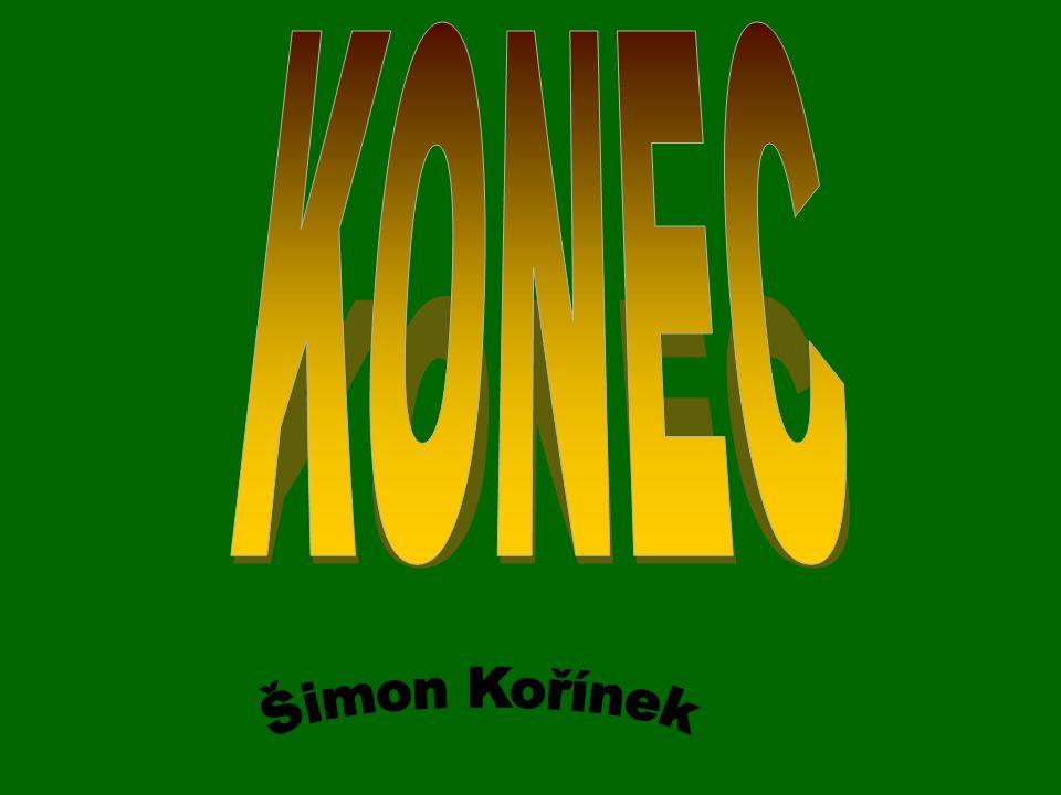 KONEC Šimon Kořínek