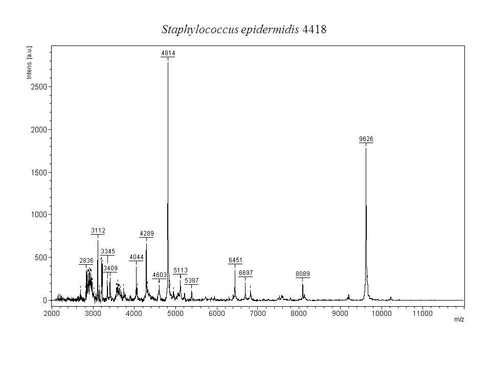 Staphylococcus epidermidis 4418