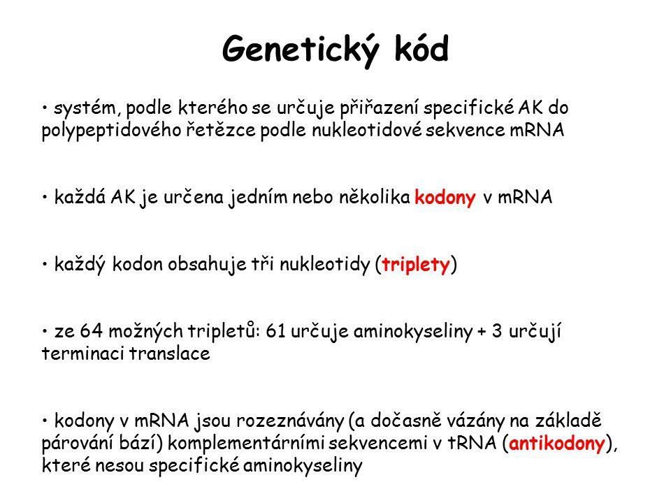 Genetický kód systém, podle kterého se určuje přiřazení specifické AK do polypeptidového řetězce podle nukleotidové sekvence mRNA.