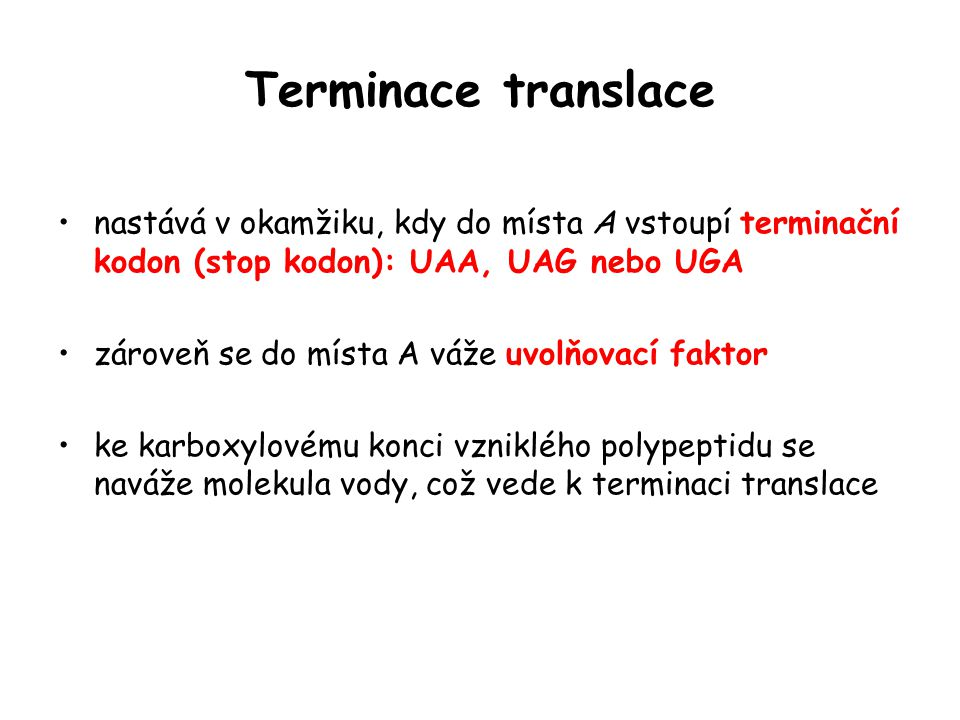 Terminace translace nastává v okamžiku, kdy do místa A vstoupí terminační kodon (stop kodon): UAA, UAG nebo UGA.