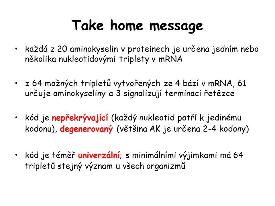 Take home message každá z 20 aminokyselin v proteinech je určena jedním nebo několika nukleotidovými triplety v mRNA.
