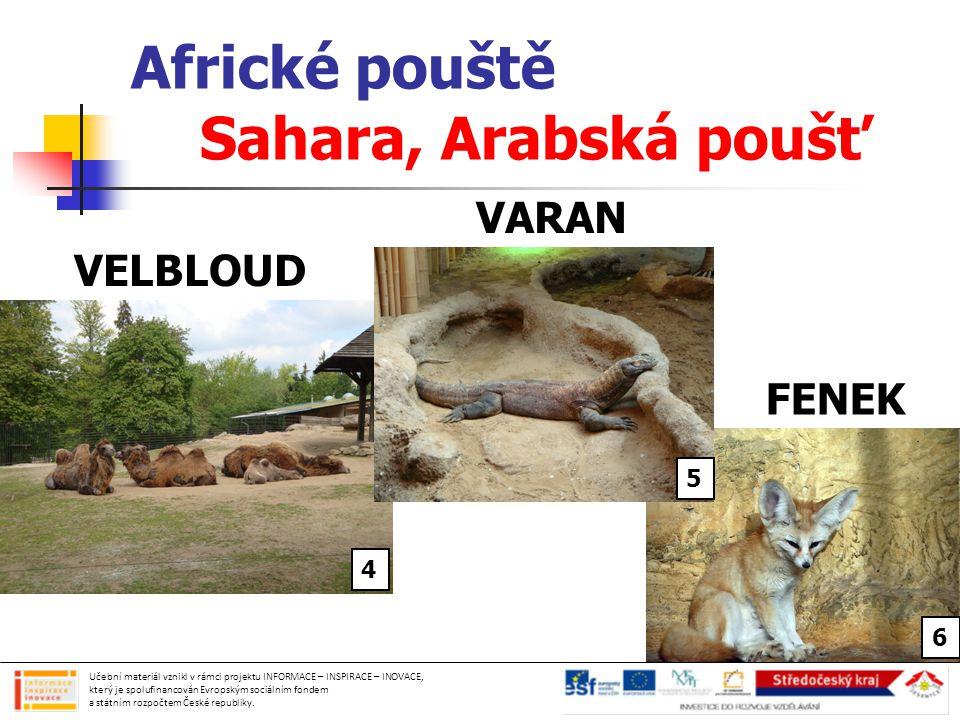 Africké pouště Sahara, Arabská poušť