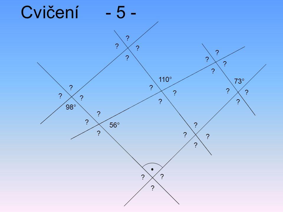 Cvičení - 5 - 110° 73° 98° 56°