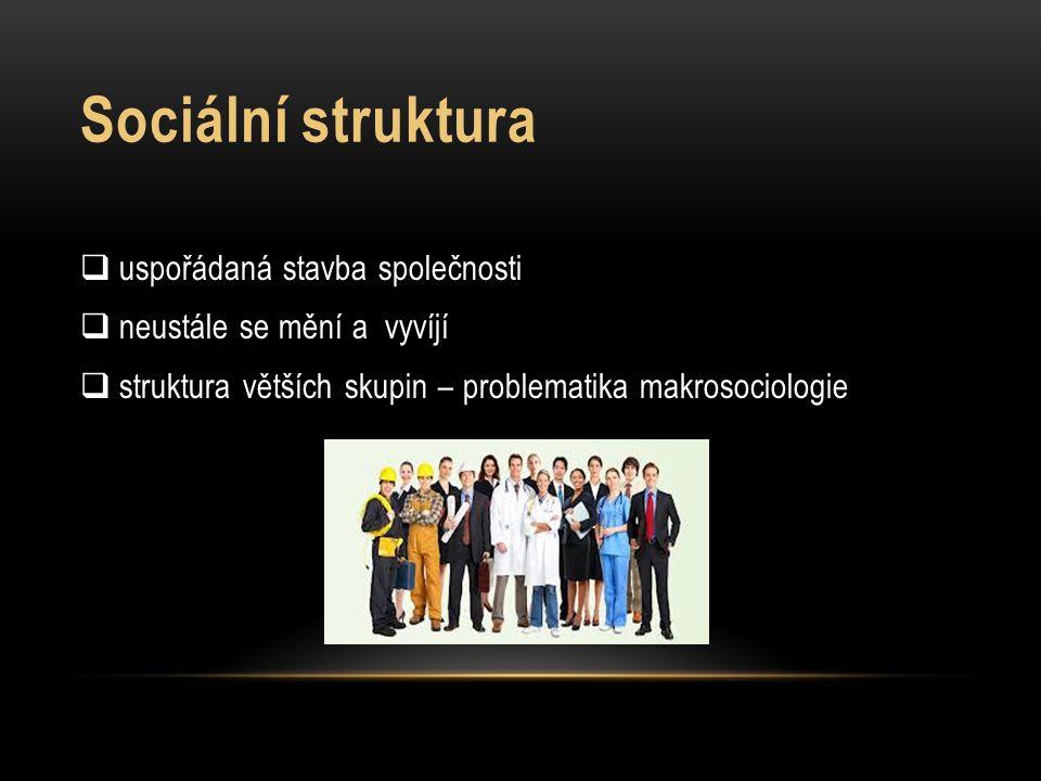 Sociální struktura uspořádaná stavba společnosti