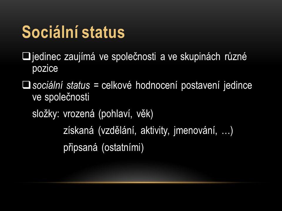Sociální status jedinec zaujímá ve společnosti a ve skupinách různé pozice. sociální status = celkové hodnocení postavení jedince ve společnosti.