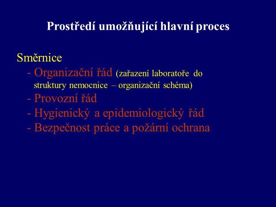 Prostředí umožňující hlavní proces