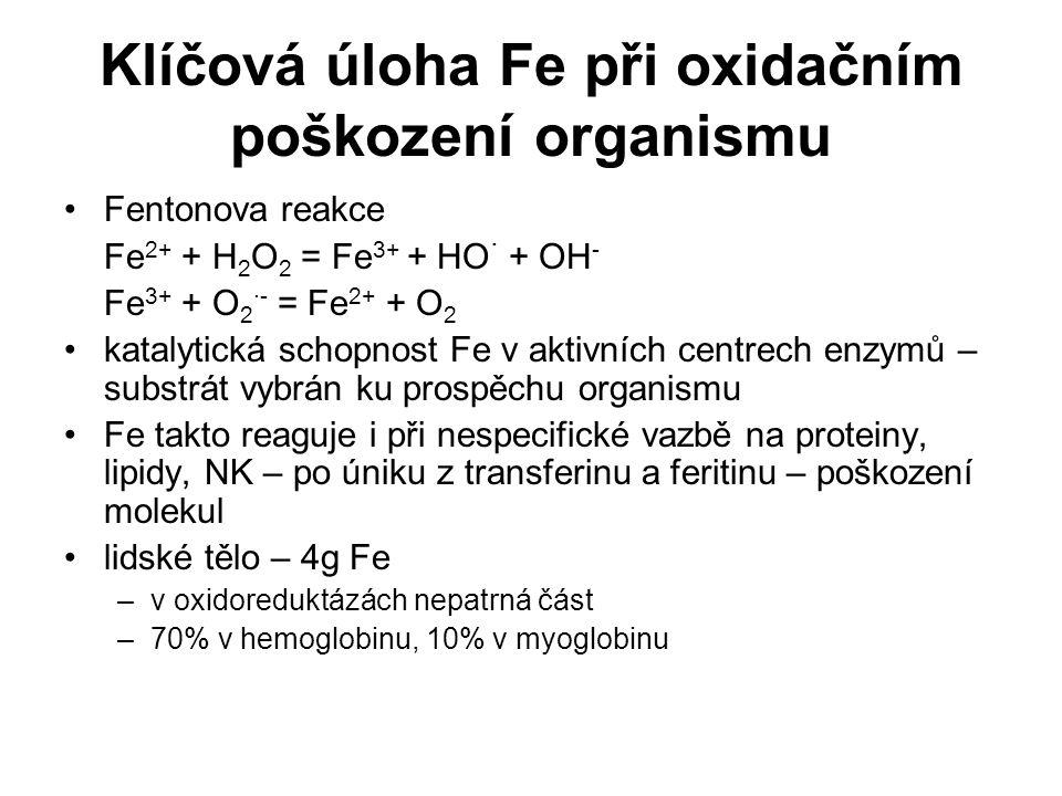Klíčová úloha Fe při oxidačním poškození organismu