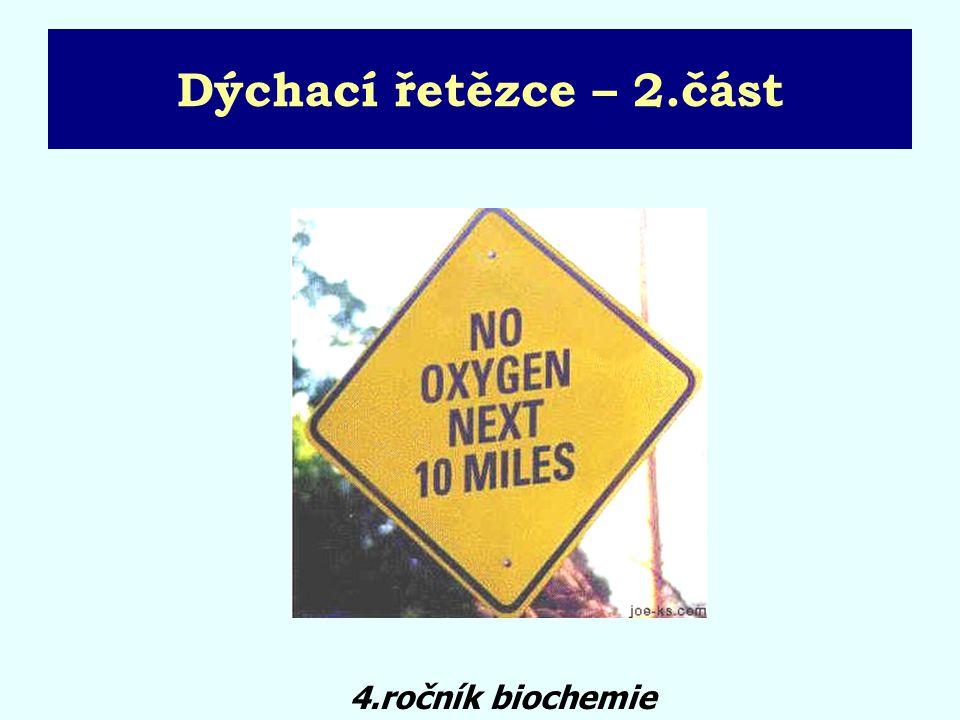 Dýchací řetězce – 2.část 4.ročník biochemie
