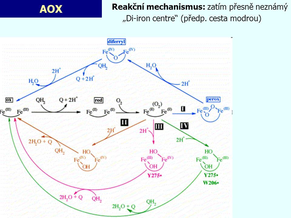 AOX Reakční mechanismus: zatím přesně neznámý