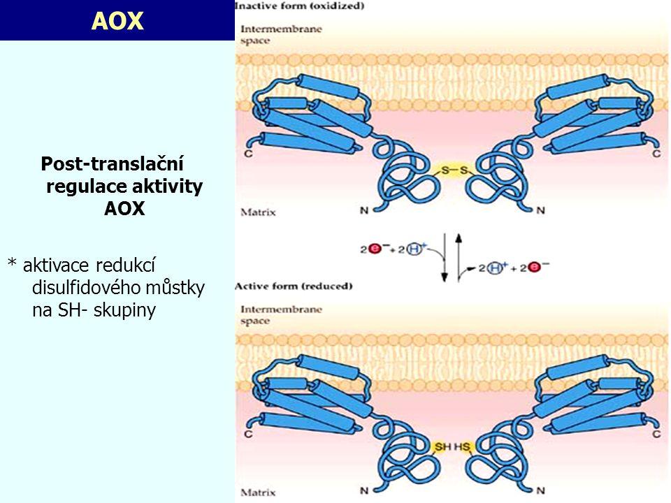 Post-translační regulace aktivity AOX