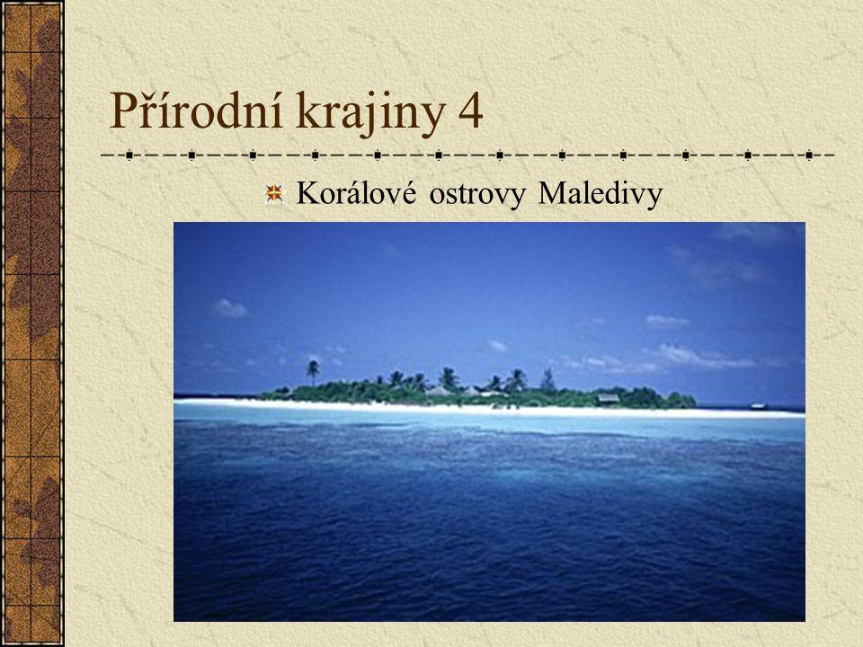Korálové ostrovy Maledivy