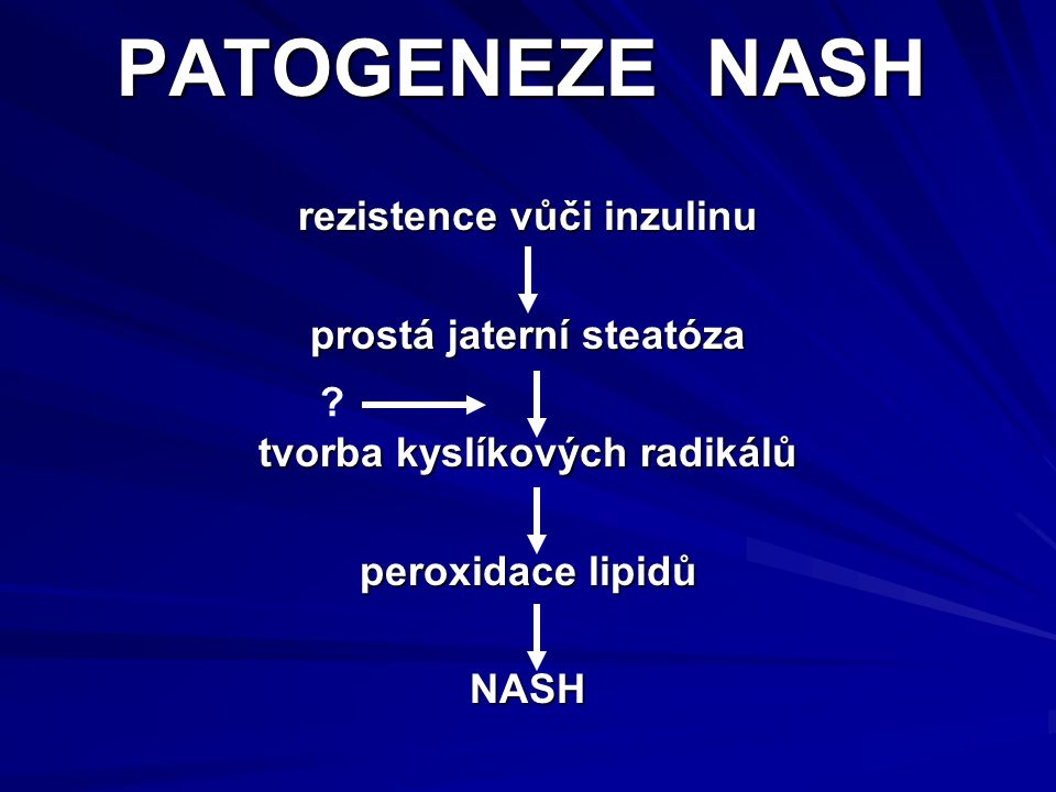 PATOGENEZE NASH rezistence vůči inzulinu prostá jaterní steatóza