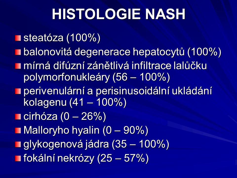 HISTOLOGIE NASH steatóza (100%)