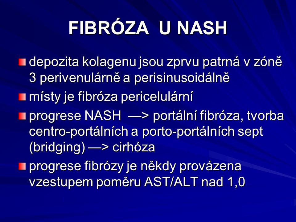 FIBRÓZA U NASH depozita kolagenu jsou zprvu patrná v zóně 3 perivenulárně a perisinusoidálně. místy je fibróza pericelulární.