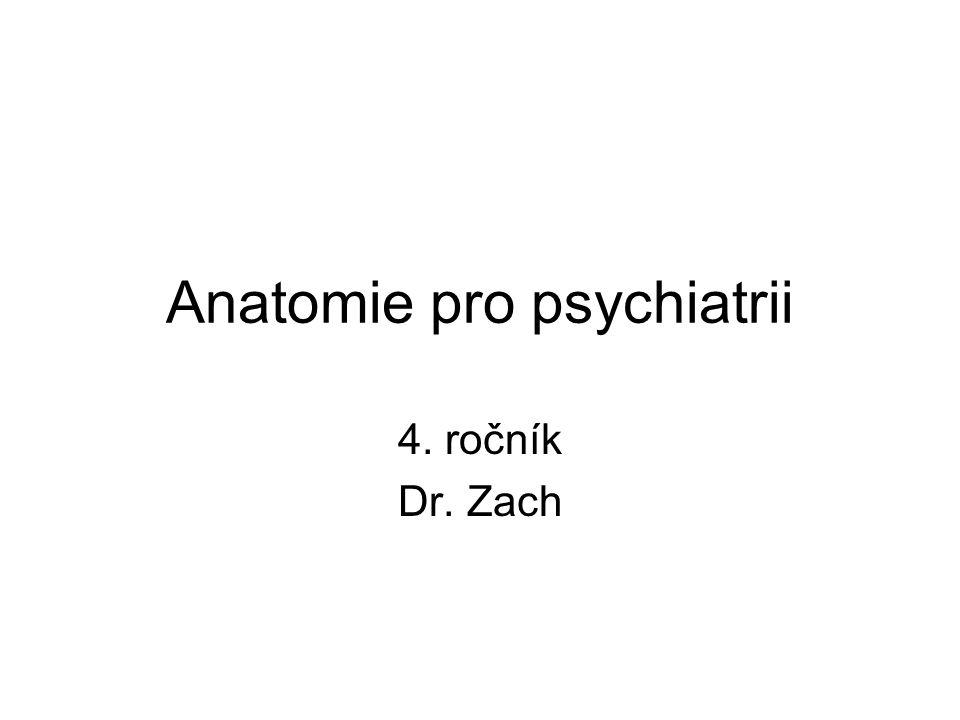 Anatomie pro psychiatrii