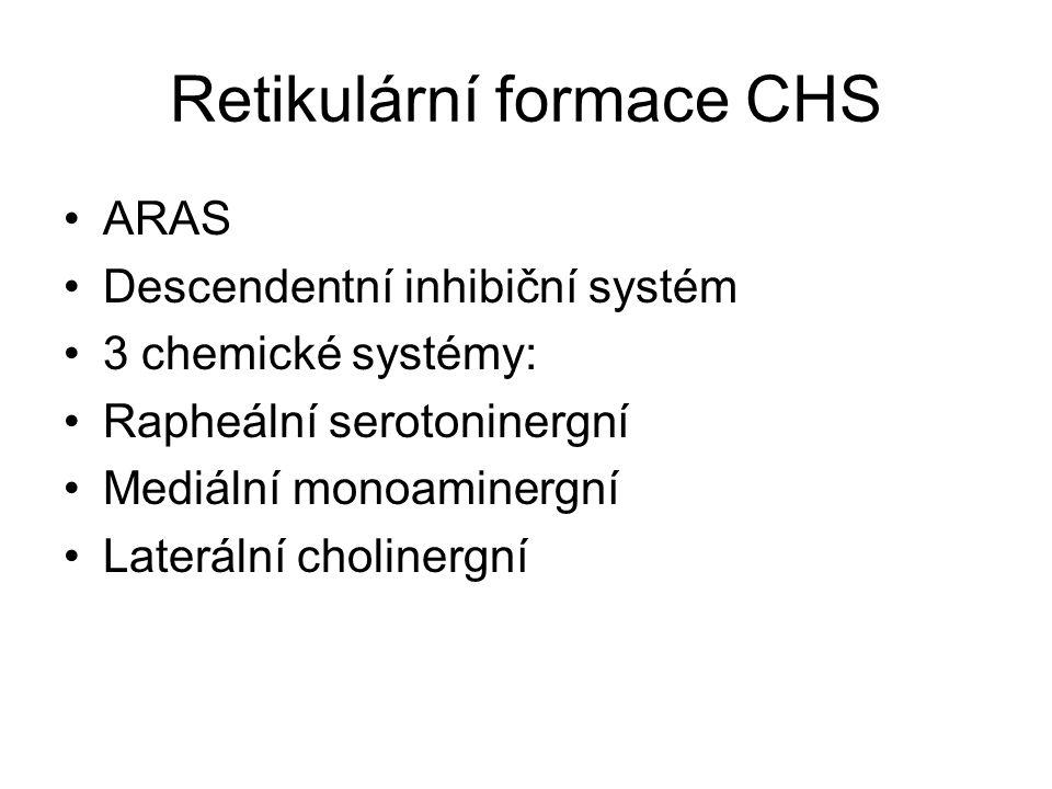 Retikulární formace CHS