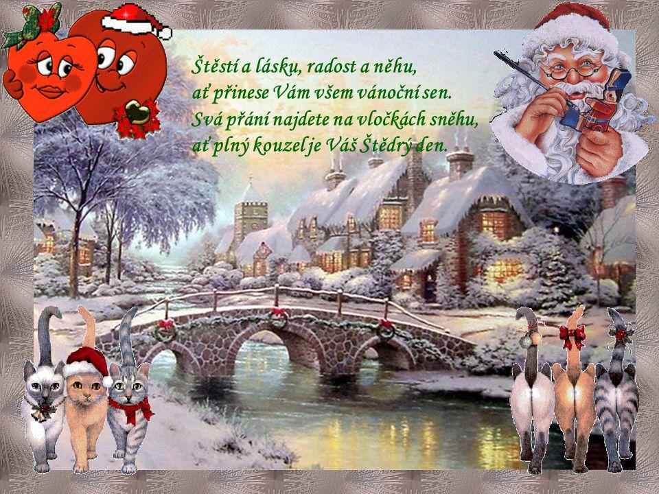 Štěstí a lásku, radost a něhu, ať přinese Vám všem vánoční sen