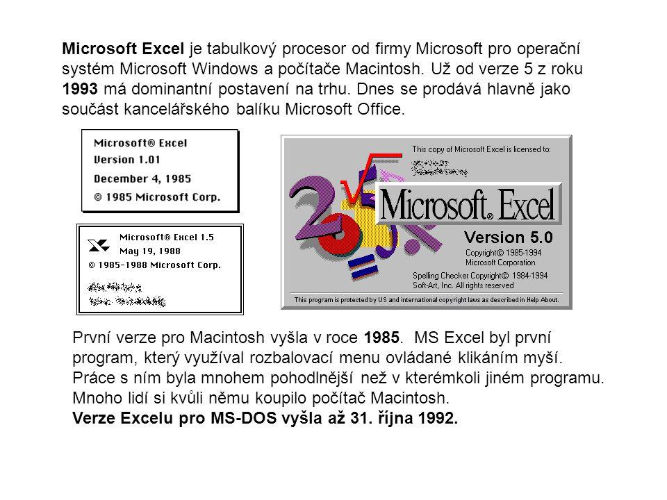 Microsoft Excel je tabulkový procesor od firmy Microsoft pro operační systém Microsoft Windows a počítače Macintosh. Už od verze 5 z roku 1993 má dominantní postavení na trhu. Dnes se prodává hlavně jako součást kancelářského balíku Microsoft Office.