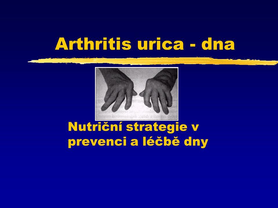 Nutriční strategie v prevenci a léčbě dny