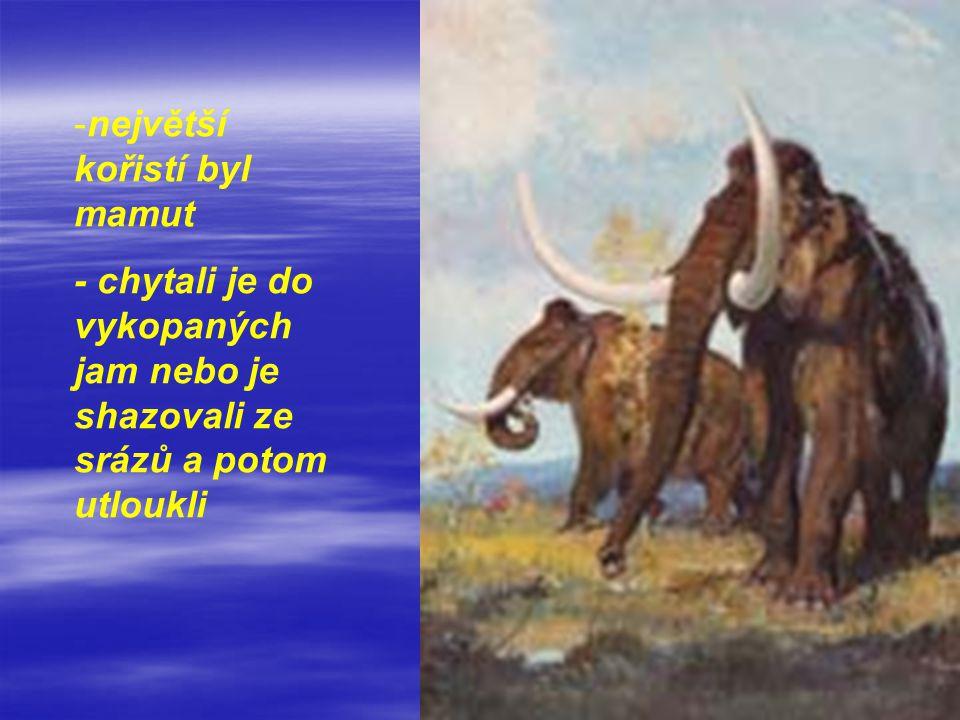 největší kořistí byl mamut