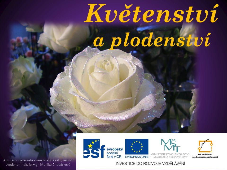 Květenství a plodenství