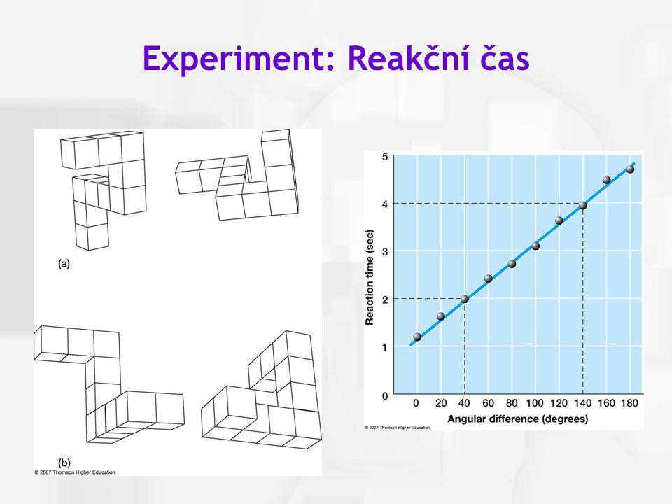 Experiment: Reakční čas