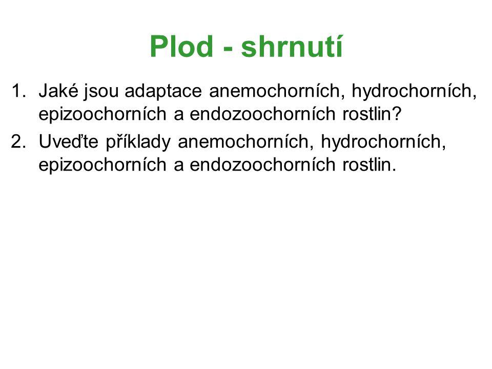 Plod - shrnutí Jaké jsou adaptace anemochorních, hydrochorních, epizoochorních a endozoochorních rostlin