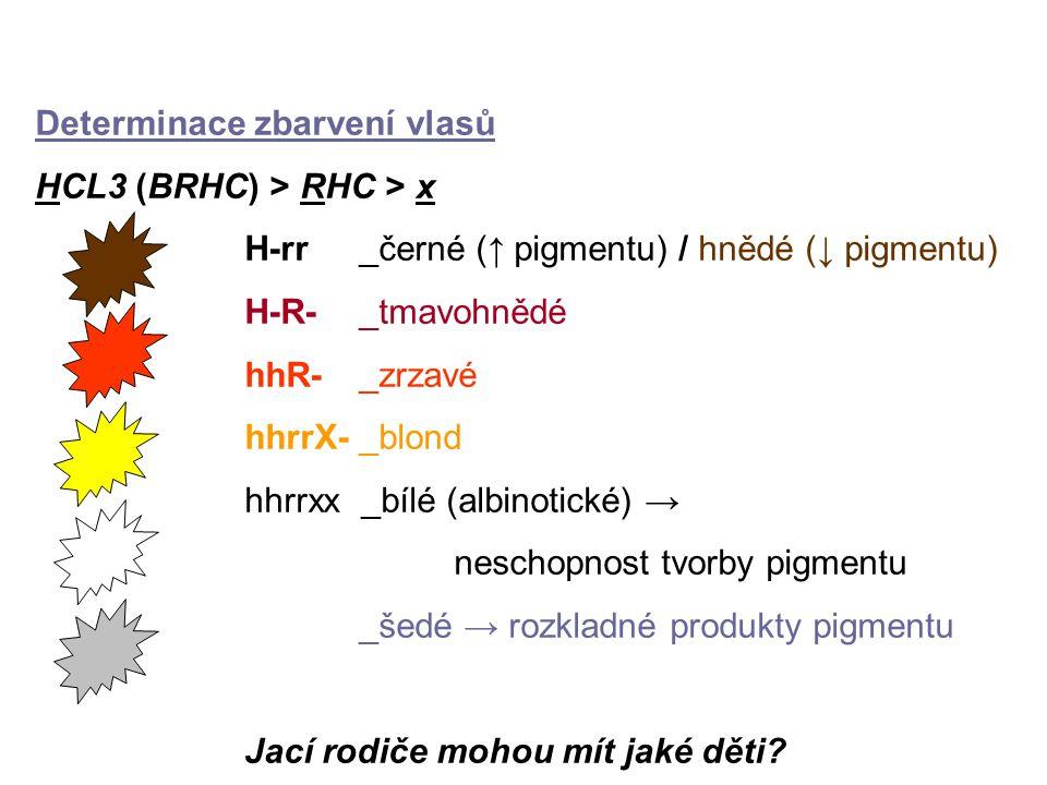 Determinace zbarvení vlasů HCL3 (BRHC) > RHC > x