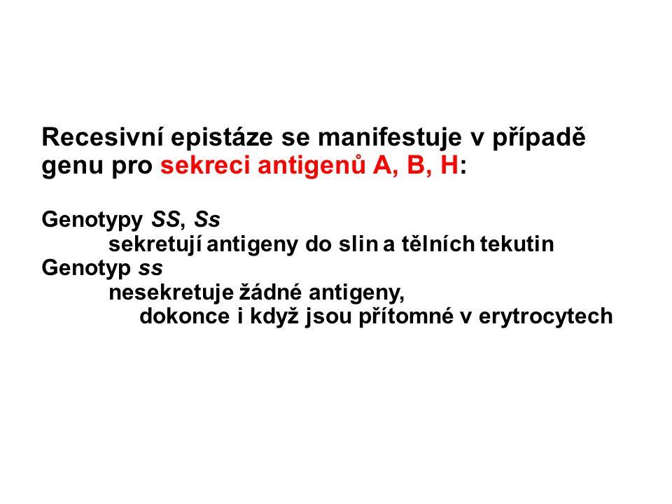 Recesivní epistáze se manifestuje v případě genu pro sekreci antigenů A, B, H: