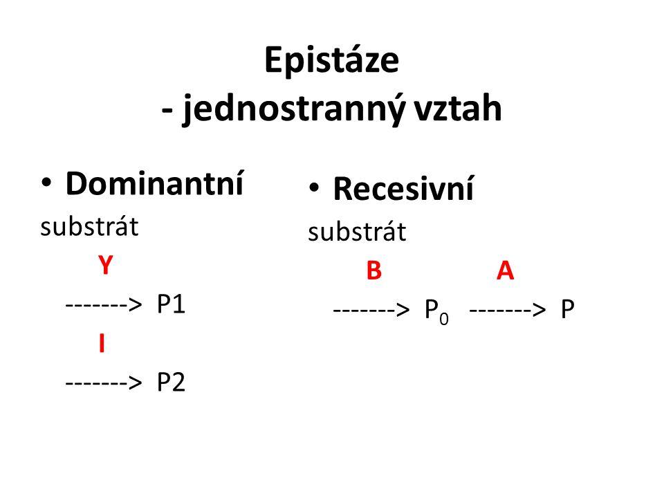 Epistáze - jednostranný vztah