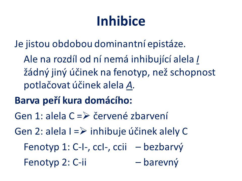 Inhibice