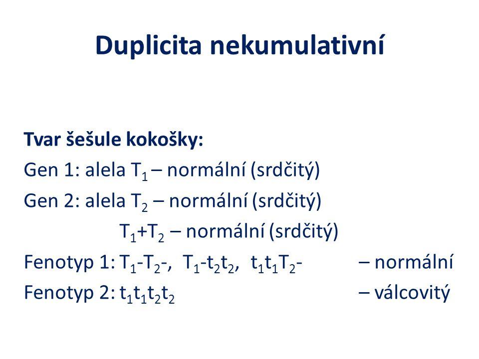 Duplicita nekumulativní
