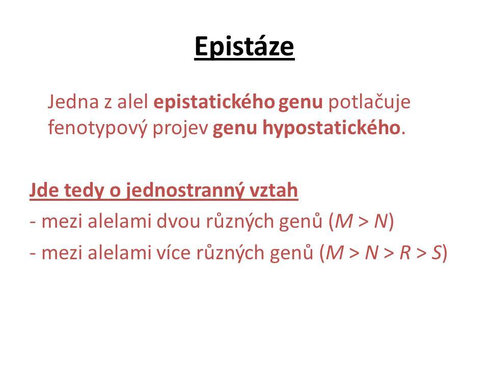 Epistáze