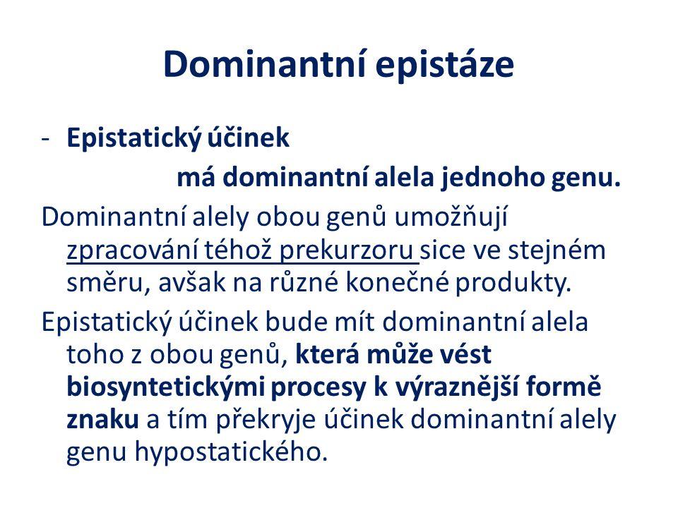 Dominantní epistáze Epistatický účinek