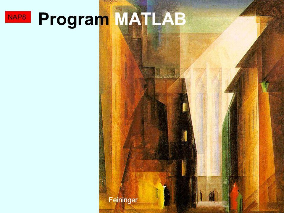 Program MATLAB NAP8 Feininger