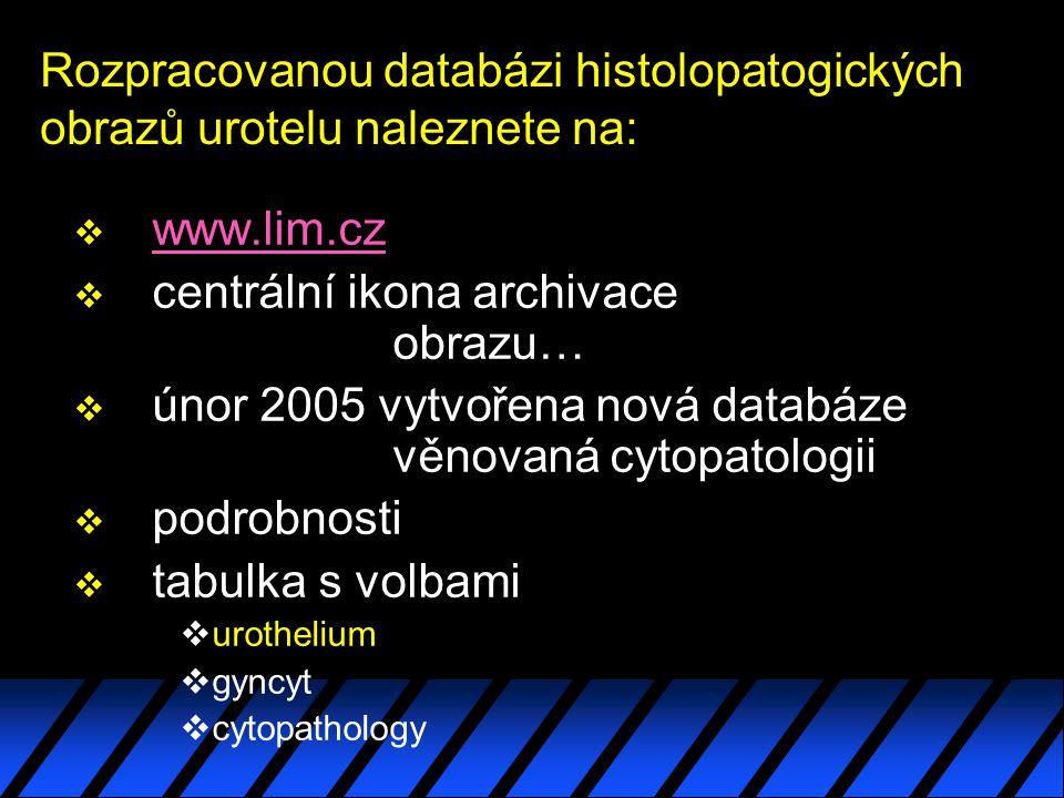 Rozpracovanou databázi histolopatogických obrazů urotelu naleznete na: