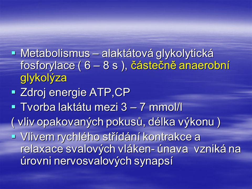 Metabolismus – alaktátová glykolytická fosforylace ( 6 – 8 s ), částečně anaerobní glykolýza