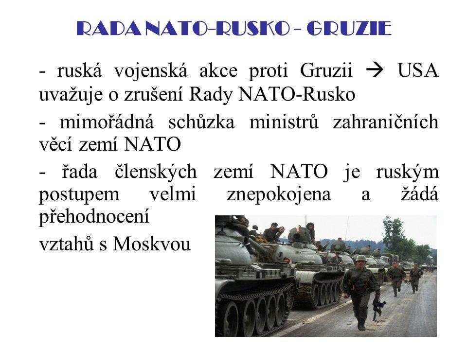 RADA NATO-RUSKO - GRUZIE