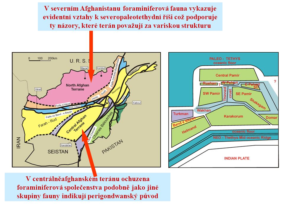 V severním Afghanistanu foraminiferová fauna vykazuje evidentní vztahy k severopaleotethydní říši což podporuje ty názory, které terán považují za variskou strukturu