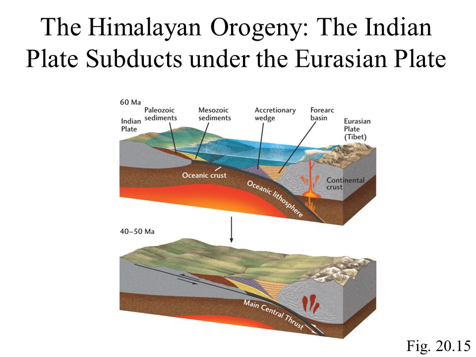The Himalayan Orogeny: The Indian Plate Subducts under the Eurasian Plate