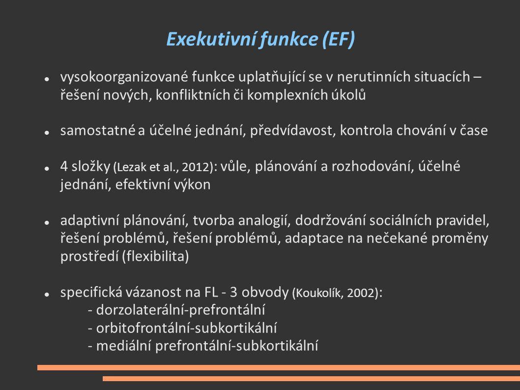 Exekutivní funkce (EF)