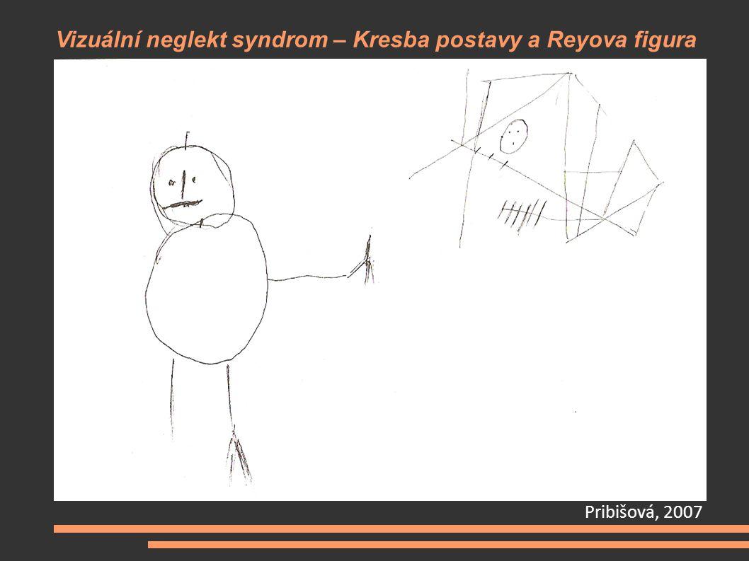 Vizuální neglekt syndrom – Kresba postavy a Reyova figura