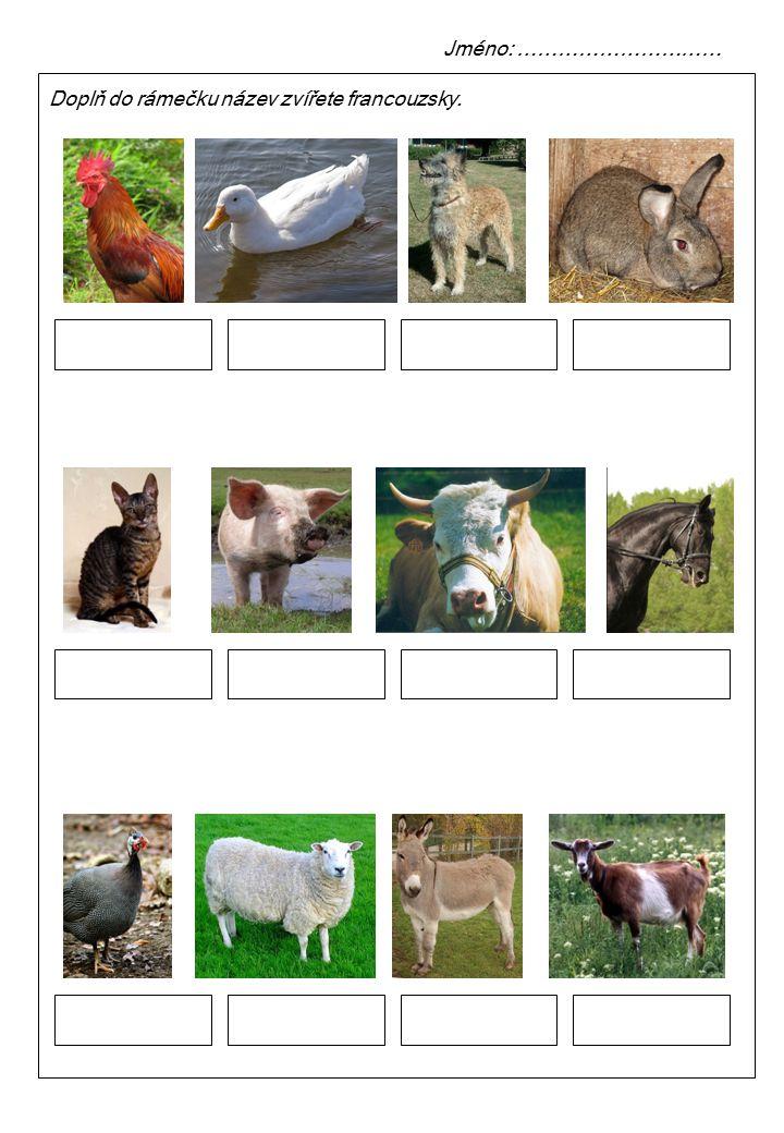 Jméno: ………………………… Doplň do rámečku název zvířete francouzsky.