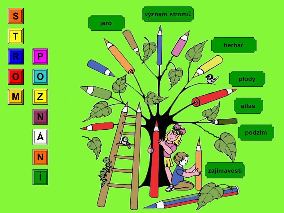 S T R R P O O M Z N Á N Í význam stromů jaro herbář plody atlas podzim