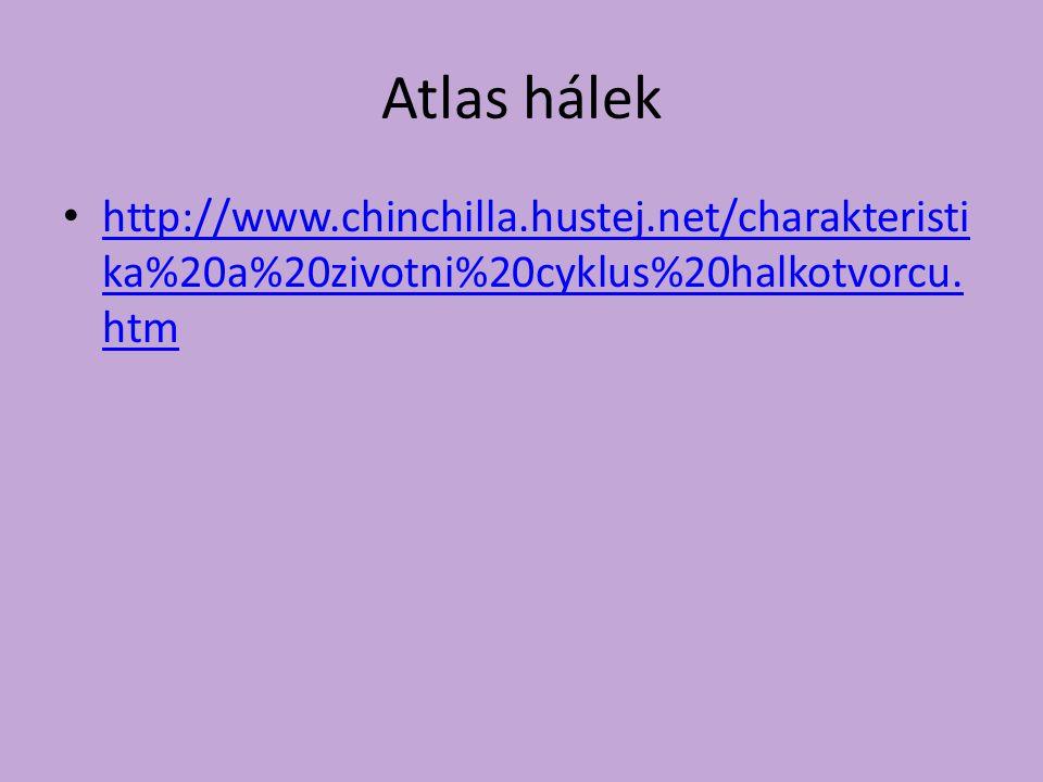 Atlas hálek http://www.chinchilla.hustej.net/charakteristika%20a%20zivotni%20cyklus%20halkotvorcu.htm.
