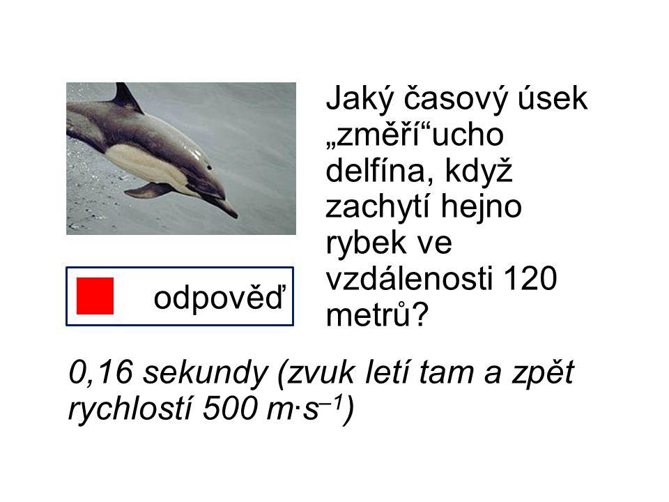 """Jaký časový úsek """"změří ucho delfína, když zachytí hejno rybek ve vzdálenosti 120 metrů"""