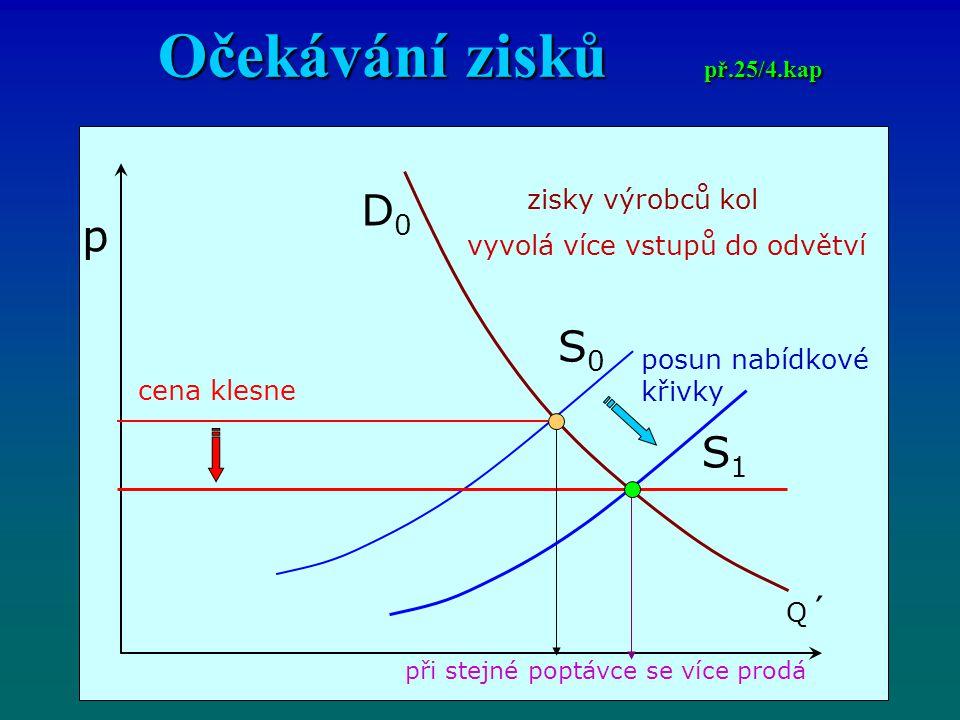 Očekávání zisků př.25/4.kap
