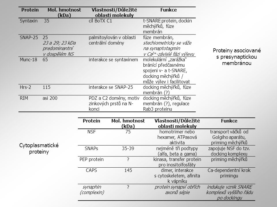 Proteiny asociované s presynaptickou membránou