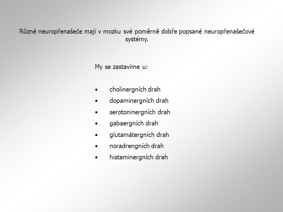 Různé neuropřenašeče mají v mozku své poměrně dobře popsané neuropřenašečové systémy.